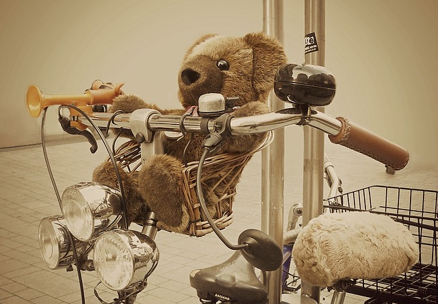 medvěd na řidítkách.jpg