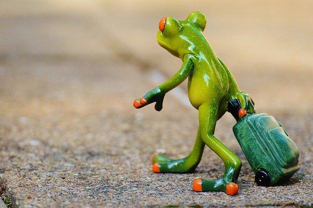 žába – změna adresy
